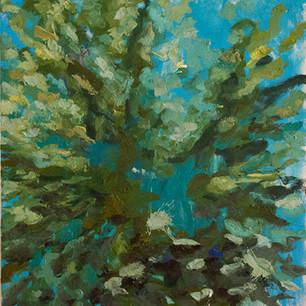 Mediterranean Souvenirs - 70x70 - oil on canvas - 2014
