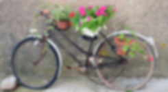 bicycle-art-2.jpg