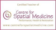 spatial medicine.png
