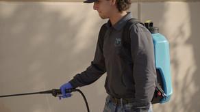 Is Pest Control Service In Buckeye Az Worth It?