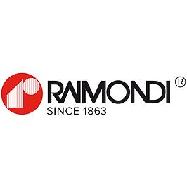 RAIMONDI CRANES