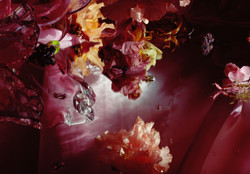 Smulders - Antiope, 2002