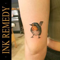 Paulie little birdy