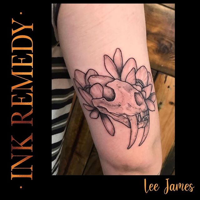 Gorgeous animal skull by Lee  For all b