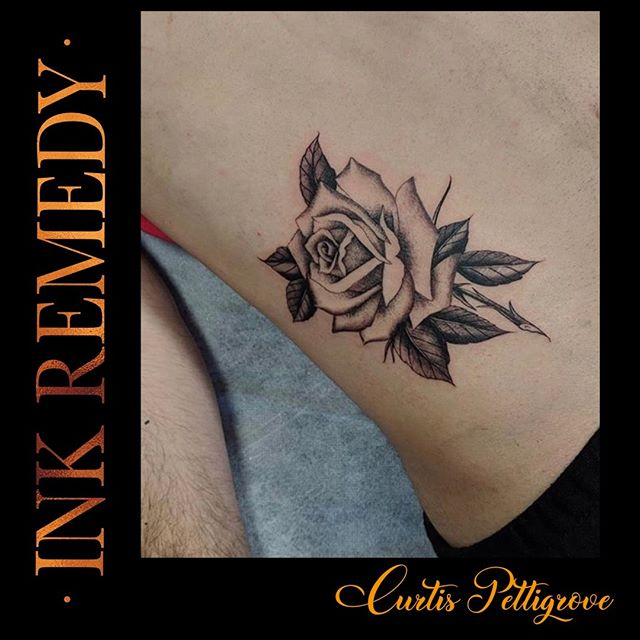 Flashback to a beautiful rose by Curtis