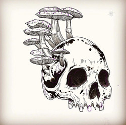 sam skull and mushies