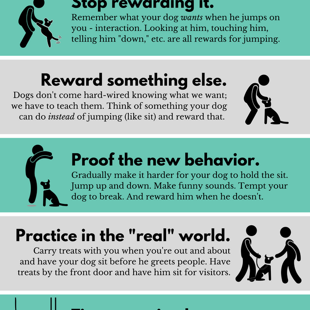 5 Steps to Reduce Jumping.png