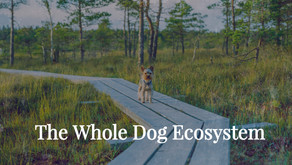 The Whole Dog Ecosystem