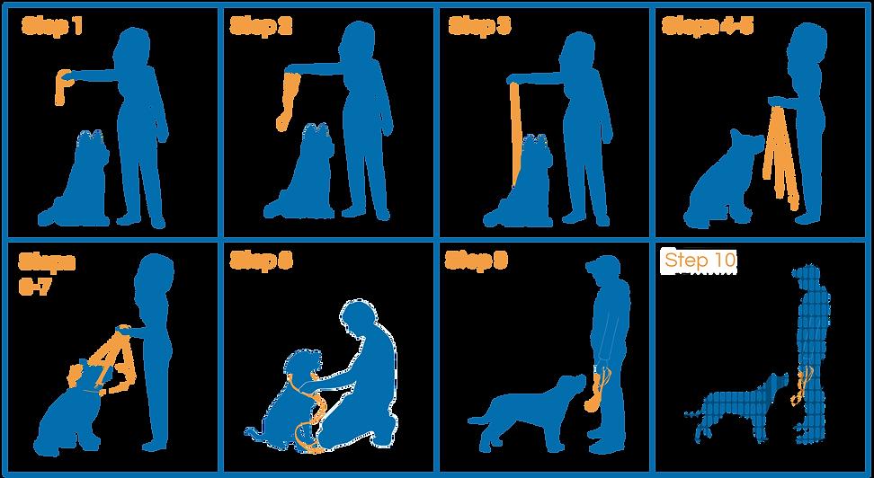 Leash Biter all steps-01.png
