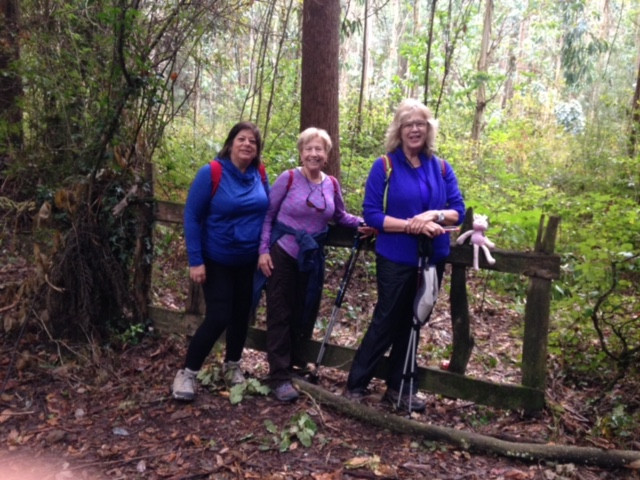 Client Focus: Strength and Endurance for Trekking in Spain