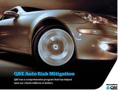 QBE Auto Risk Brochure_Page_1.jpg