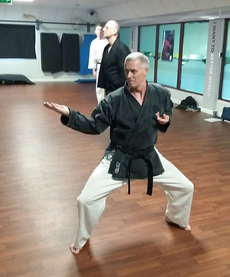 Adults Karate for experienced students