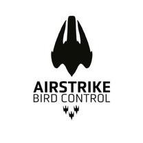 airstrike_use.jpeg
