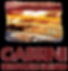 cassini-logo.png