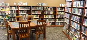 Are Pagan Books Missing from Your Local Library?