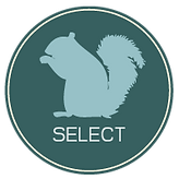 select_icon.png
