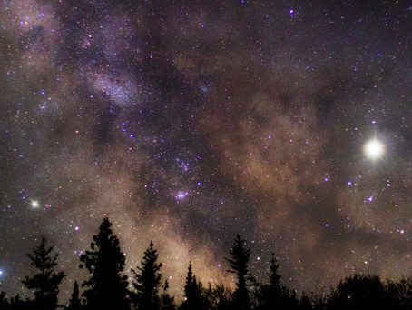 Dazzling meteors, twinkling planets: Your summer stargazing guide