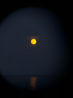 Golden moon from the shores of Lake Erie