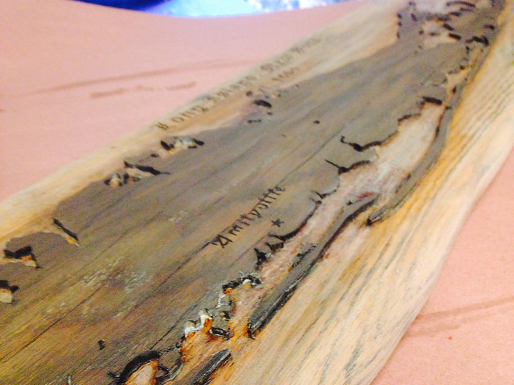Long Island (Driftwood) Med 2 1/2 ft.