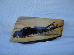 Long Island Woodcut