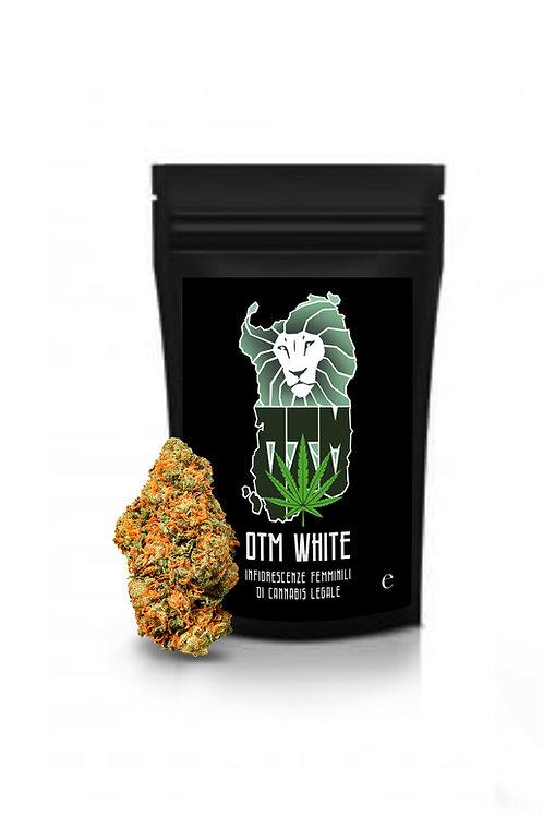 OTM WHITE - 1g