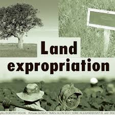 CONSTITUTION SECTION 25 AMENDMENT PROCESS (expropriation without compensation)