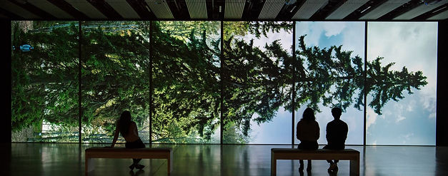 SouthbankCentre AmongtheTreesExhibit.jpg