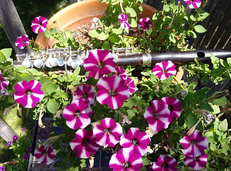 Flutes & Flowers 2020 No.13.jpg