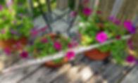 Flutes & Flowers 2020 No.17.jpg