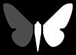 logo_moth_web.png