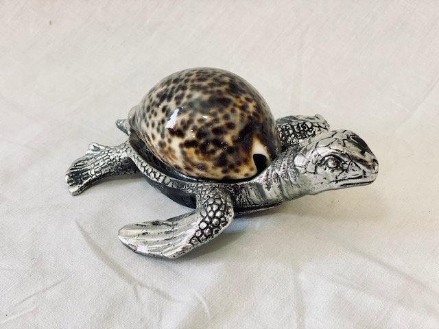 Tortuga marina grande