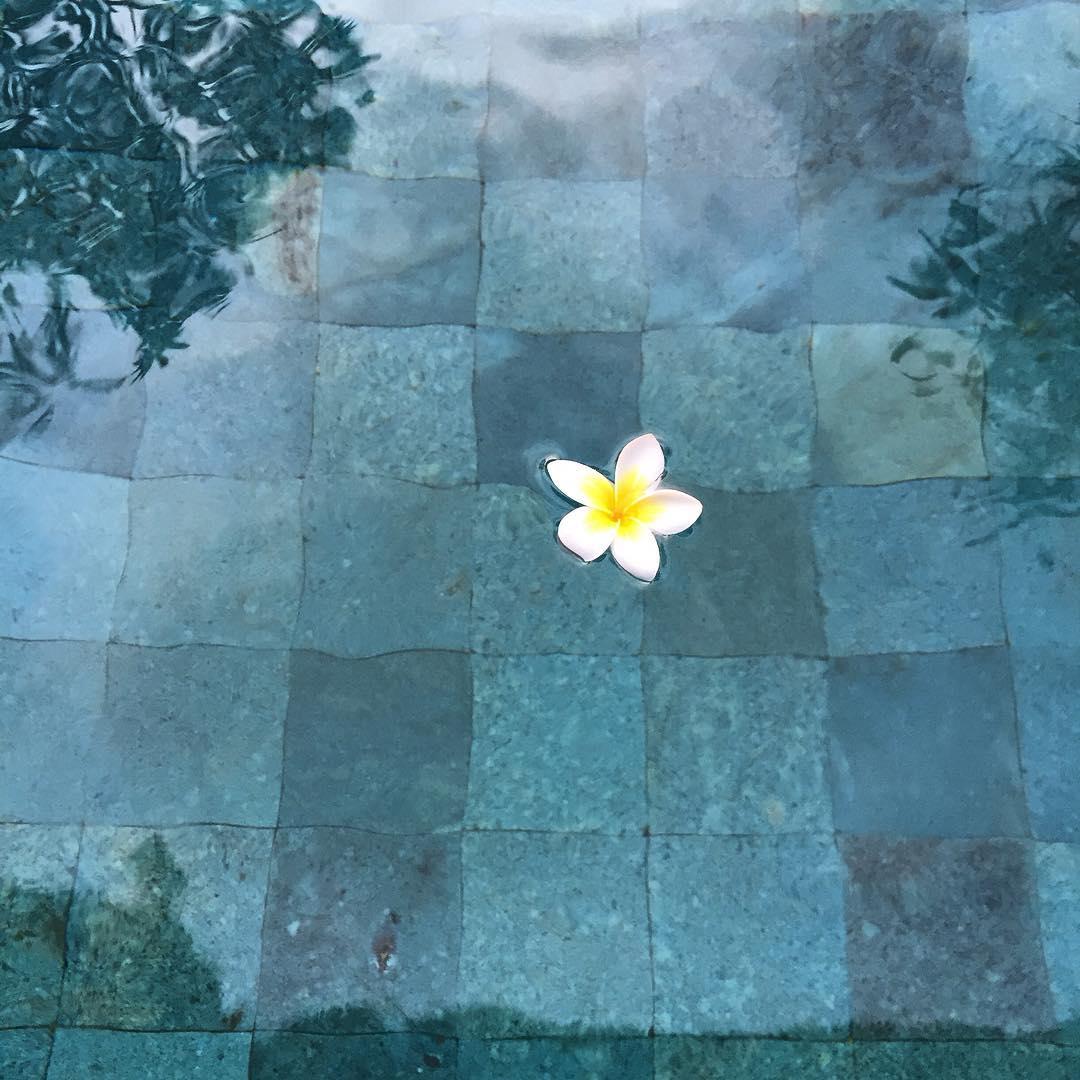 หินปูสระว่ายน้ำ หินซูกาบูมิ