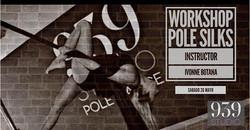 Workshop Pole Silks con Ivonne Botana ,S