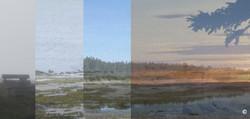 Tout est paysage 2