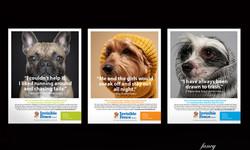 Print & Digital Ad Campaign Concept