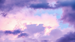 BB Background Web (1).png