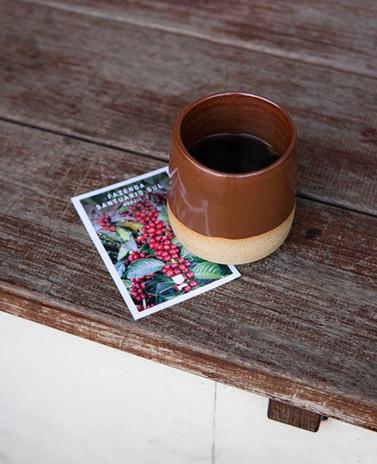 Tasting cards