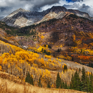 Fall in the Leadking Basin large-1.jpg