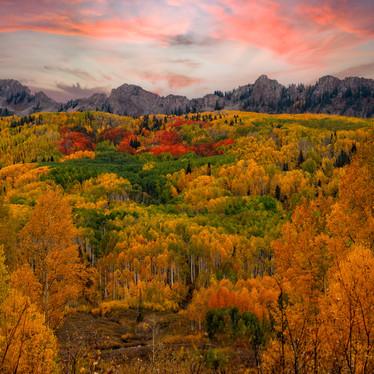 Colorado Fall Dream.jpg