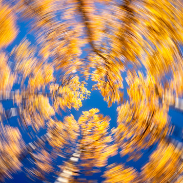 Aspen Fall Spin.jpg