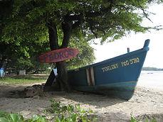 Pedro's surf shop fishing tours in tamarindo costa rica