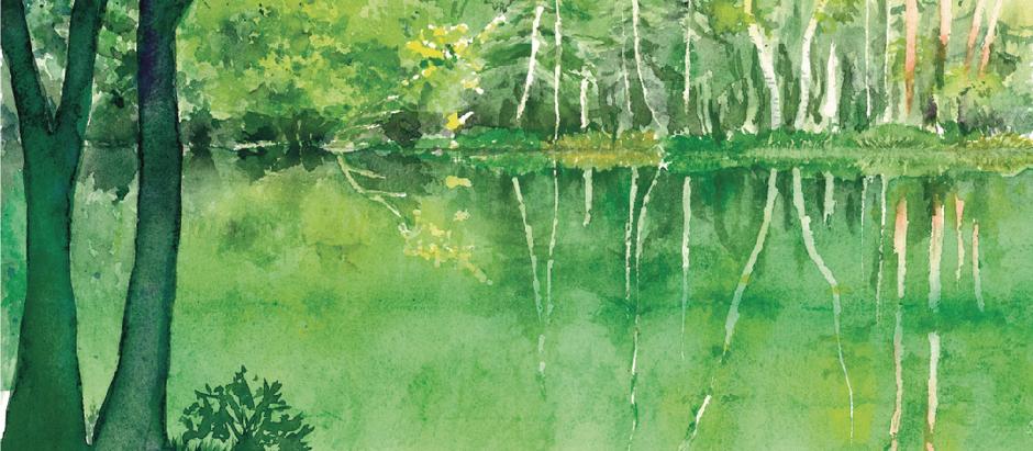 三鷹スケッチの回第20回水彩画展