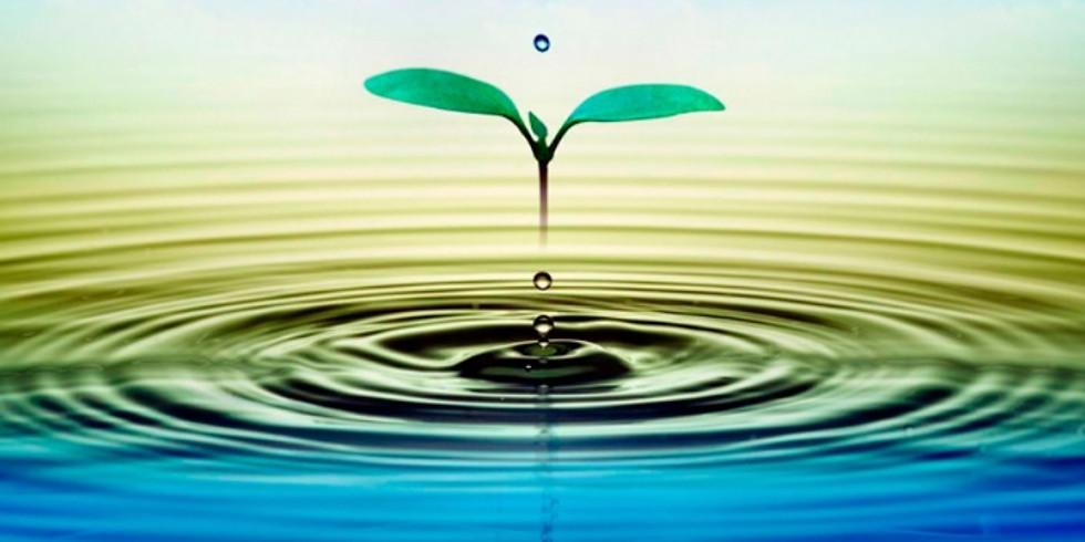 La Importancia del Agua en el Desarrollo Rural
