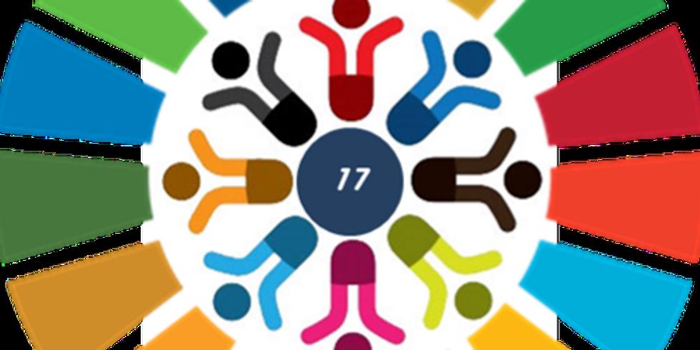 Agenda 2030: ODS 17: Modelo de Gobernanza - Capital Humano - Las ONG en la Trazabilidad de los Proyectos ODS