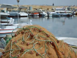 04/03/2019. Evolución y Avances en la pesca.