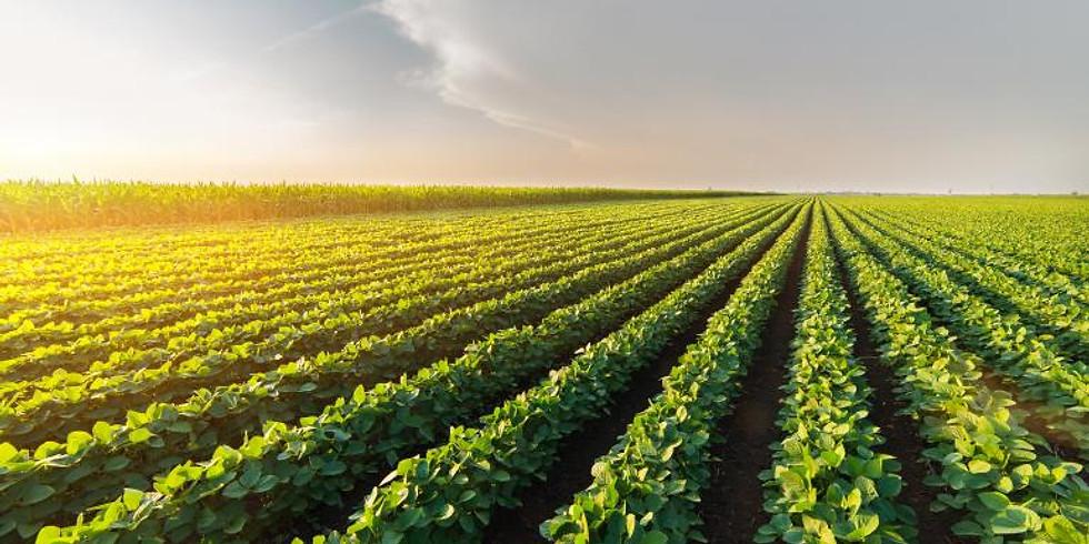 El futuro de la agricultura en España