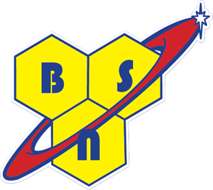 BSN-logo-ACD7D3396F-seeklogo.com.png