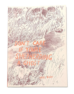Don't Care if You're Shepherding a Ghost by Edie Bush