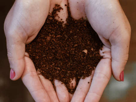 Aerating the Soil of Your Plants