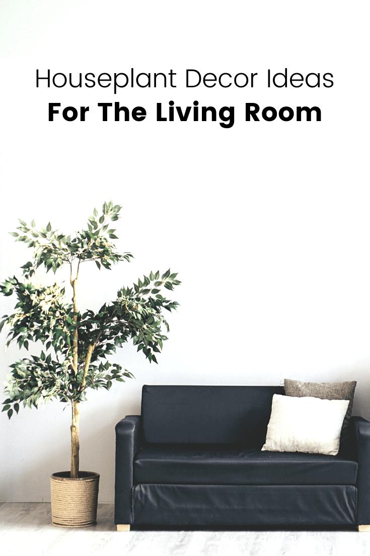 Houseplant Decor Ideas for the Living Room
